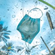 Projet Azur Anaelle Marot Ecolosport