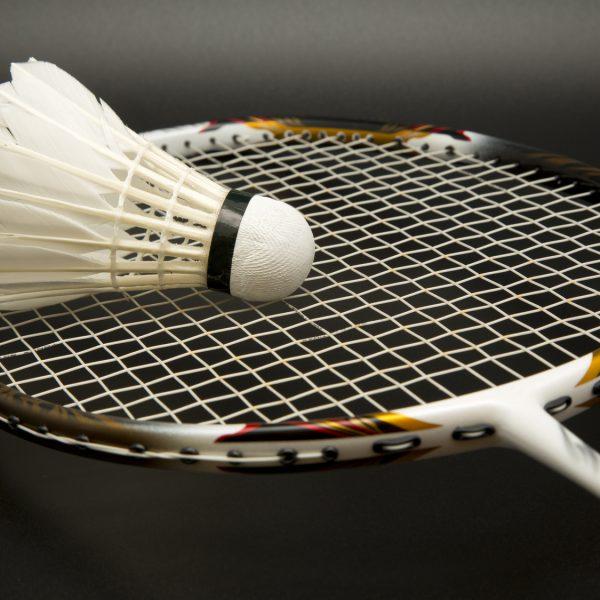 Volant des 7 rivières Bédarrides Badminton Ecolosport