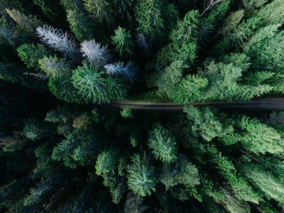 Fondation Relais Vert Ecolosport