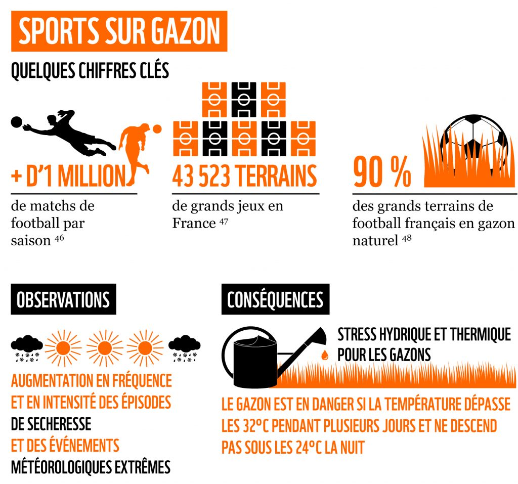 WWF Rapport Sport Ecologie Ecolosport
