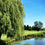 EcoSport Golf Fiac Tarn Ecologie Ecolosport